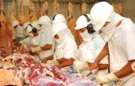 اللحوم البرازيلة فاسدة