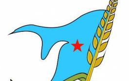 قيادي في اشتراكي تعز يحذر من السكوت عن ظاهرة انفلات المسلحين في المحافظة.