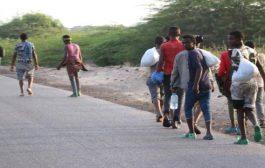 الكشف عن إحصائية جديدة بأعداد المهاجرين الأفارقة الذي تم إجلاؤهم من اليمن