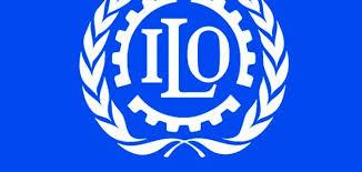 منظمة العمل الدولية فتح مكتب لتنسيق انشطة المنظمة