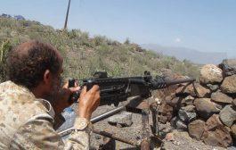 تقدم للقوات الحكومية شمال الضالع وغارات جوية تستهدف تجمعات للانقلابيين