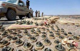 مشروع مسام يستأنف اعماله في نزع الألغام بالجوف وشبوة