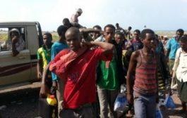 قوات التحالف العربي تحرر 81 إفريقياً من قبضة المليشيات الحوثية