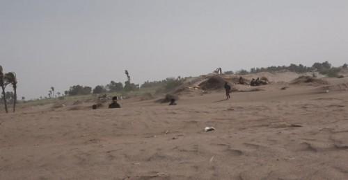 مليشيات الحوثي تقصف مواقع القوات المشتركة ومنازل المدنيين