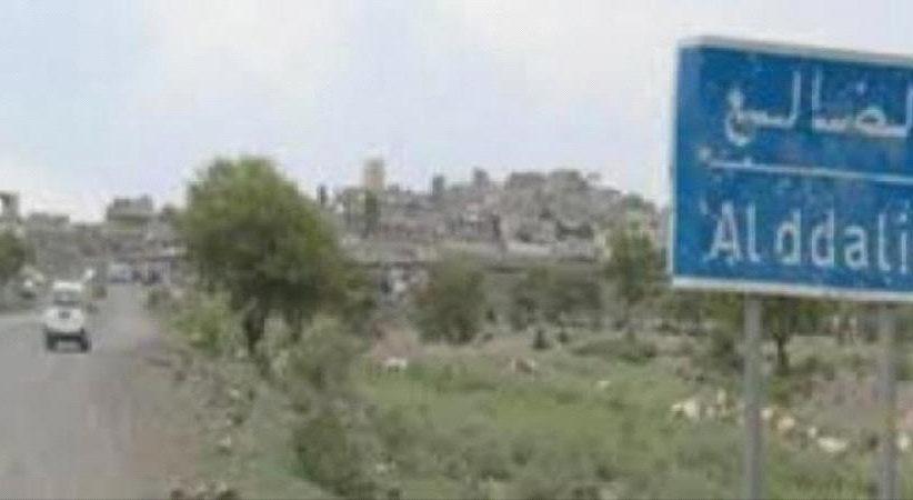 الضالع : تفكيك عبوتين ناسفتين وسط المدينة ومقاتلات التحالف تقصف مواقع الحوثيين