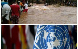 الأمم المتحدة: ضرر السيول أصاب الأحياء السكنية والمواقع المخصصة للنازحين