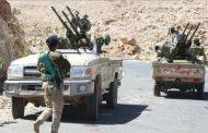 مقتل العشرات من مليشيات الحوثي جنوب الحديدة