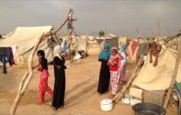 بسبب المعارك الدائرة في الجوف نزوح 25 ألف أسرة إلى مأرب خلال 24 ساعة