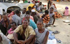 الهجرة الدولية : نحو 10 آلاف مهاجر افريقي دخلوا اليمن