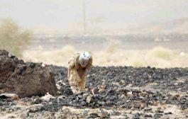 «مسام» ينتزع 316 لغماً في اليمن خلال الأسبوع الرابع من شهر مايو