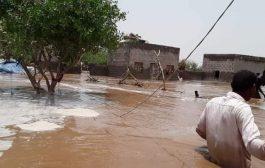 استمرار معاناة أبناء الحديدة مستمرة جراء تدفق السيول