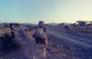 قتلى وجرحى حوثيين في عملية عسكرية لقوات اللواء 30 مدرع بالضالع