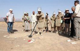 انتزاع 8318 لغماً زرعها الحوثيون في اليمن