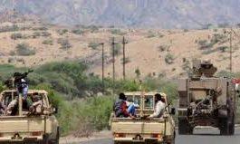 الجيش والمقاومة  اليمنية يسيطران على أحياء المخا الشرقية