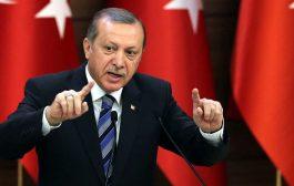 الرئاسة التركية تتهم المانيا من جديد