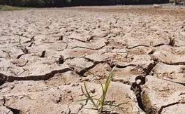 مناشدة للحد من معاناة أهالي سامع بسبب جفاف المياه بالمديرية