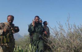 القوات المشتركة تحرر مناطق جديدة غرب قعطبة بالضالع