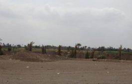 القوات المشتركة تصد هجمات مليشيات الحوثي في التحيتا