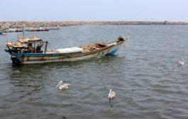 صيادون يعثرون على ألغام بحرية في سواحل الحديدة