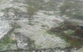 أمطار غزيزة بالضالع تتلف المحاصيل الزراعية