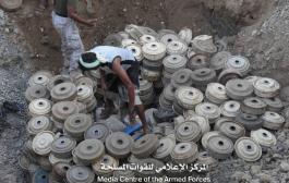 إتلاف 500 لغم زرعتها مليشيات الحوثي بمحافظة حجة