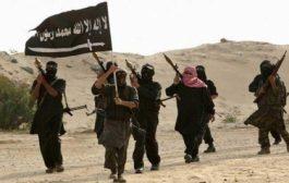 تقرير أمريكي: قدرات القاعدة وداعش في اليمن تضاءلت منذ التدخل العسكري للتحالف إلا أن التوترات الأخيرة بين السعوديين والإماراتيين دفعهما إلى استغلالها