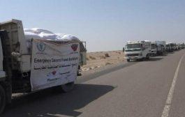 مليشيات الحوثي تمنع منظمة عالمية من تقديم المساعدات الغذائية للسكان المحاصرين في الدريهمي