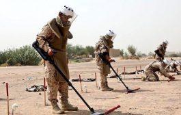 انتزاع نحو 3 آلاف لغم في اليمن خلال أسبوع واحد