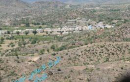 مقتل خمسة  من ميليشيا الحوثي في عملية نوعية نفذها اللواء 30 مدرع والعمالقة غرب الضالع.