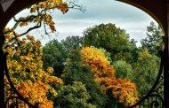 جمال الخريف في المنتزه الملكي أورانينباوم الروسي