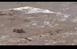 وفاة امرأة وطفلها غرقاً بسيول الأمطار الغزيرة في لحج