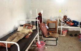 الجراحي: تزايد أعداد الوفيات بمرض حمى الضنك