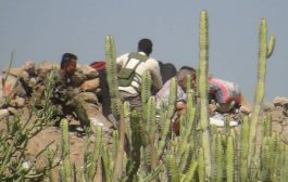 مصرع 2 من مسلحي الحوثي في إحباط عملية تسلل غرب الضالع