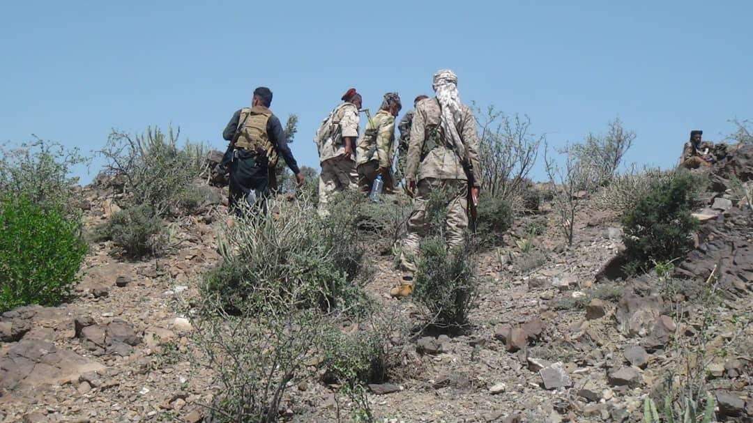 القوات الحكومية تحبط عملية تسلل لمليشيا الحوثي غرب الضالع