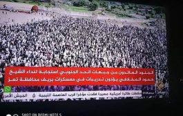 استغراب شعبي من افتتاح معسكر لمقاتلين خارج عن القانون بتعز