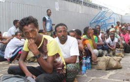 الهجرة الدولية:138 ألف مهاجر إفريقي وصلوا عدن العام الماضي