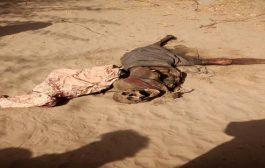 العثور على جثة مجهولة في مدينة جعار