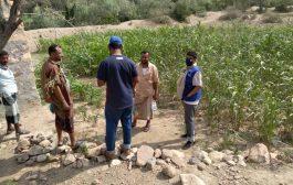 منظمة الهجرة الدولية تمنح مشروع مياه المونسة طاقة شمسية